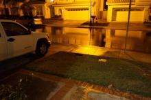 Rain ... Rain ... Palacio